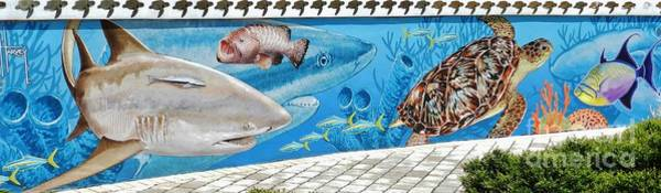 Wall Art - Photograph - Guy Harvey Mural 3 by Snapshot Studio