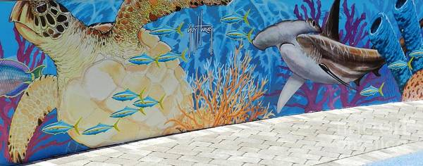 Wall Art - Photograph - Guy Harvey Mural by Snapshot Studio