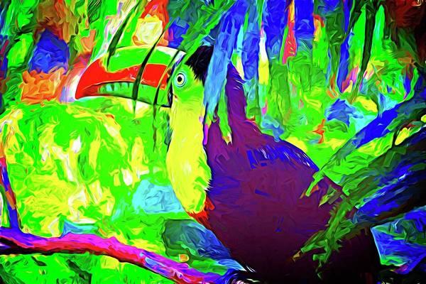 Photograph - Hidden Toucan Abstract by Alice Gipson