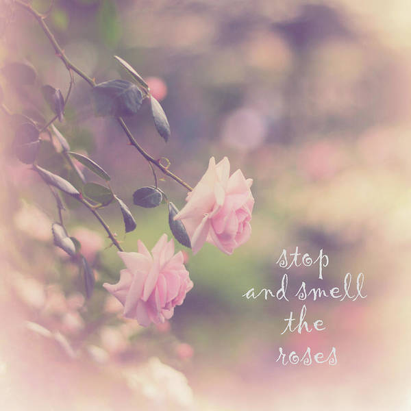 Wall Art - Photograph - Stop And Smell The Roses by Jessica Jenney