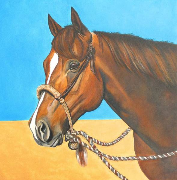 Horsemanship Painting - Hackamore Horse by Lucy Deane