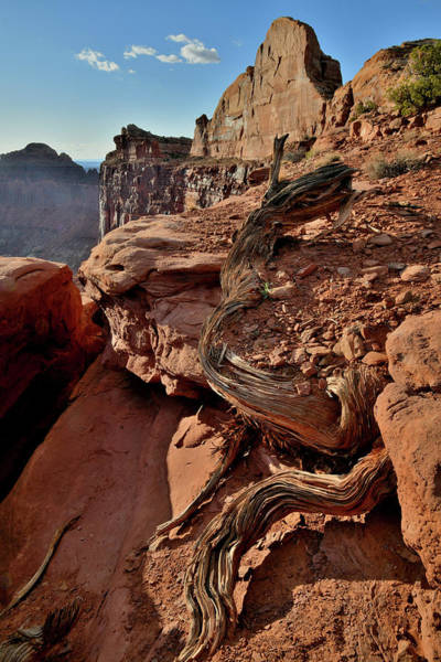 Photograph - Half Dome At Green River Overlook In Canyonlands by Ray Mathis