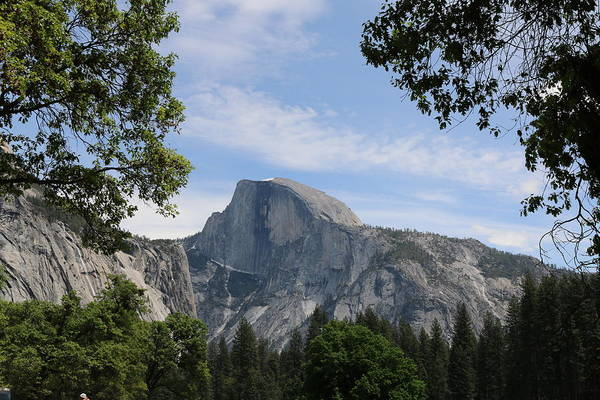 Photograph - Half Dome by Christy Pooschke