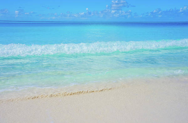 Photograph - Half Moon Cay Beach 1 by Dawn Richards