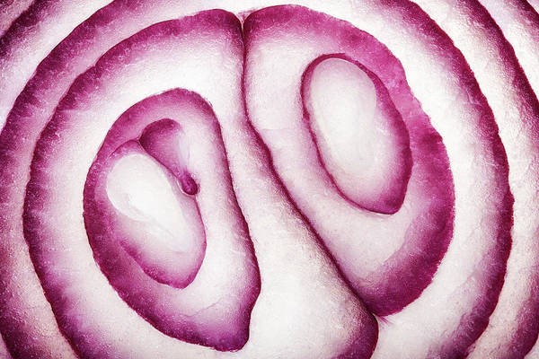 Wall Art - Photograph - Half Red Onion Macro by Johan Swanepoel