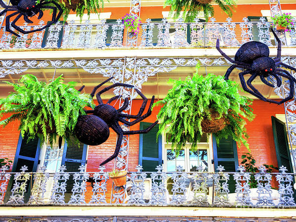 Photograph - Halloween Balcony In New Orleans by John Rizzuto