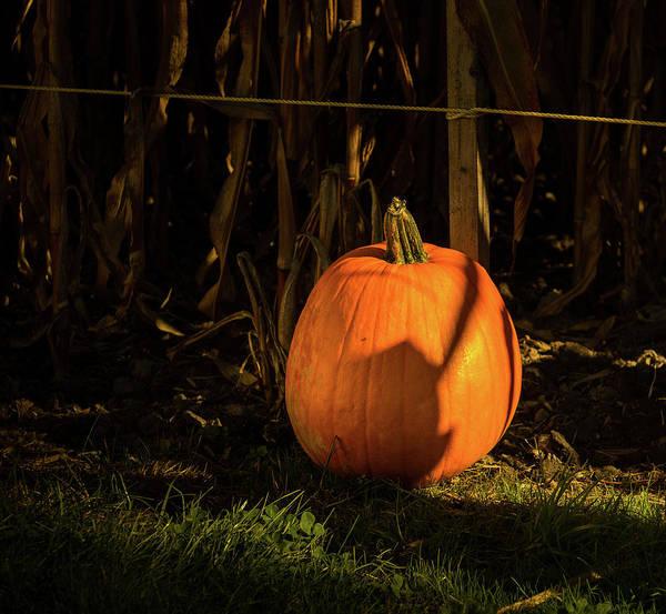Photograph - Hallowing Pumpkin by Juan Contreras