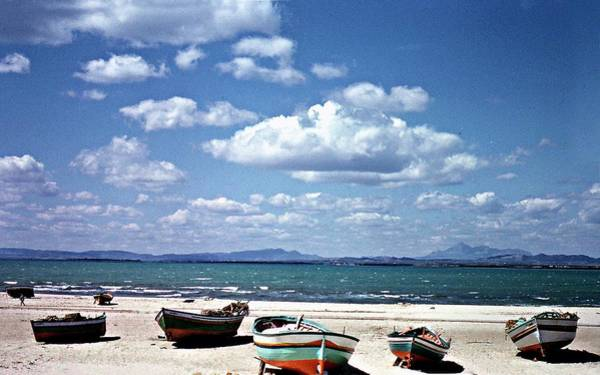 Hammamet Photograph - Hammamet 1964 by Cyril Fontaine