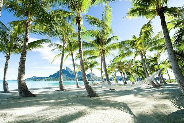 Pacific Ocean Photograph - Hammock At Bora Bora, Tahiti by Yusuke Okada/amanaimagesrf