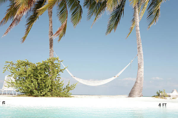 Wall Art - Photograph - Hammock Between Two Palm Trees On Beach by Baerbel Schmidt