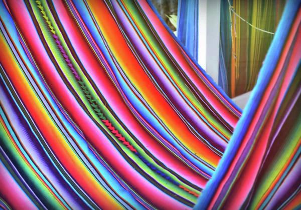 Photograph - Hammock Hue by JAMART Photography