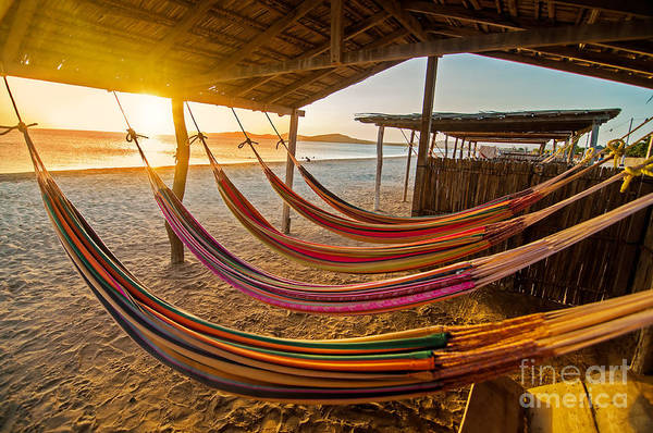 Wall Art - Photograph - Hammocks On A Beach At Sunset by Jess Kraft