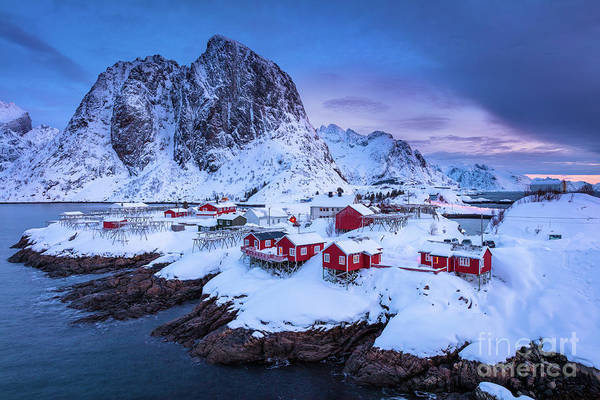 Wall Art - Photograph - Hamnoy Twilight by Inge Johnsson