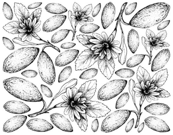 Castilla Drawing - Hand Drawn Background Of Fresh Banana Passionfruits by Iam Nee