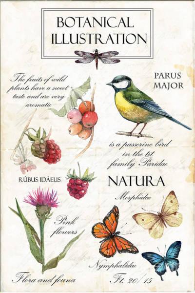 Wall Art - Digital Art - Hand Drawn Botanical Illustration In by Yana Fefelova