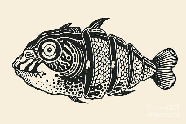 Wall Art - Digital Art - Hand Drawn Fish Cut Into Slices, Design by Jumpingsack