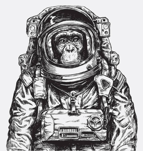 Cosmos Digital Art - Hand Drawn Monkey Astronaut Vector by Tairy Greene