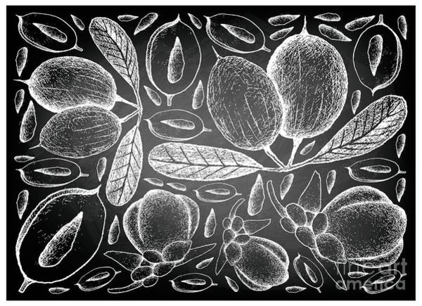 Coco Drawing - Hand Drawn Of Karanda And Double Coconut On Chalkboard by Iam Nee