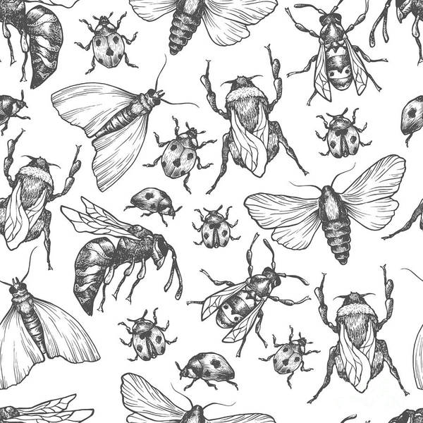 Wall Art - Digital Art - Hand Drawn Vector Pattern With Insects by Olga Olmix