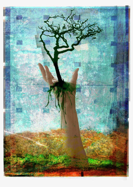 Environmental Issues Digital Art - Hand Holding Tree Above Ground by Mike Moran