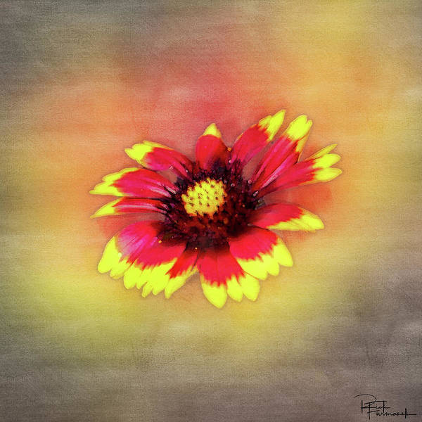 Painting - Hand Painted In Digital Watecolor by Rick Furmanek