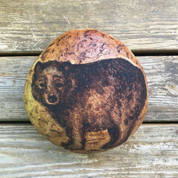 Photograph - Hand Painted Sourdough Bear Boule 2 by Amy E Fraser