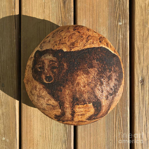 Photograph - Hand Painted Sourdough Bear Boule 3 by Amy E Fraser
