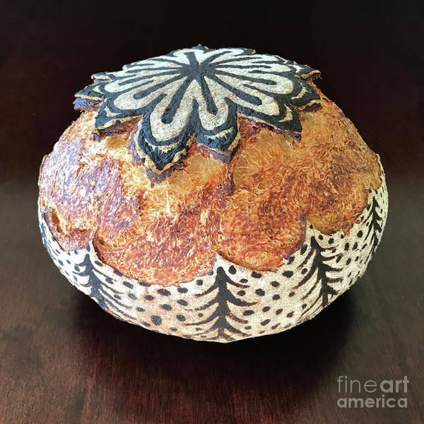 Photograph - Hand Painted Sourdough Seed Pods 2 by Amy E Fraser