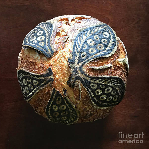 Photograph - Hand Painted Sourdough Seed Pods 5 by Amy E Fraser