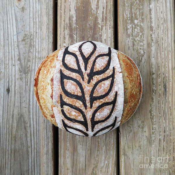 Photograph - Hand Painted Wheat Design Sourdough Boule  by Amy E Fraser