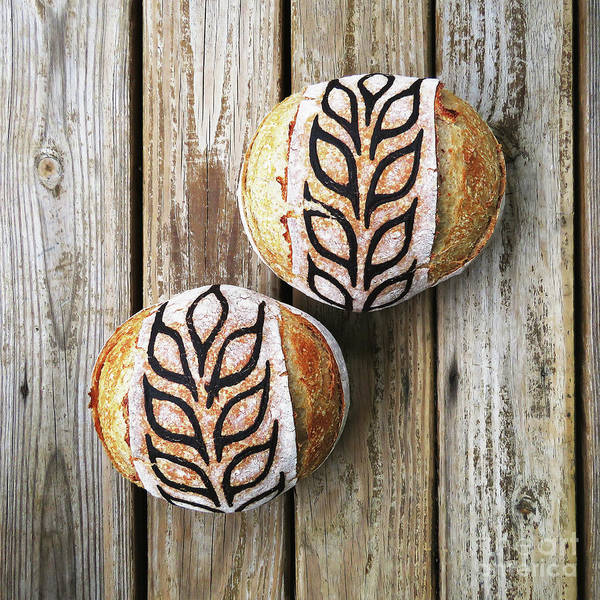 Photograph - Hand Painted Wheat Design Sourdough Boules by Amy E Fraser