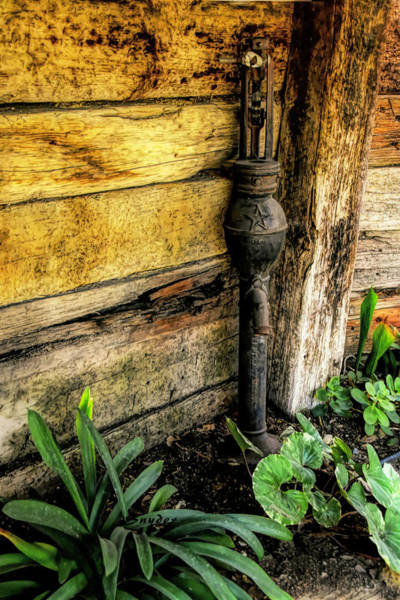 Wall Art - Photograph - Hand Pump In The Flower Bed by Floyd Snyder