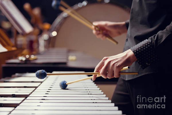 Wall Art - Photograph - Hands Of Musician Playing The Vibraphone by Furtseff
