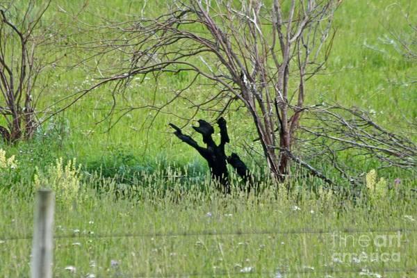 Photograph - Hands Up by Ann E Robson