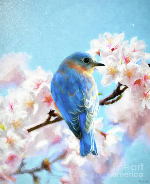 Wall Art - Painting - Handsome Gazing Bluebird by Tina LeCour