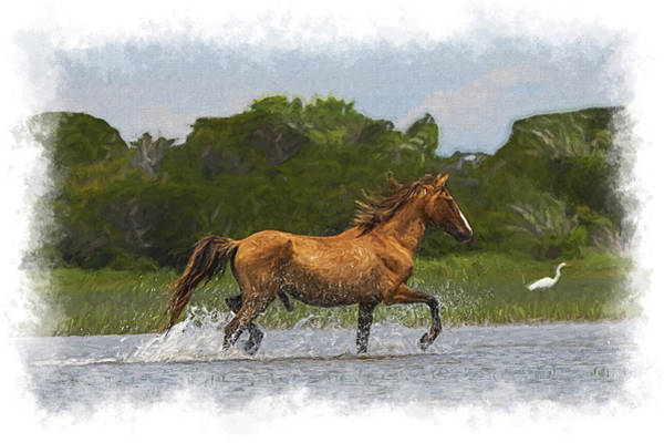 Photograph - Handsome Stallion Horse Prancing Through The Marsh Paintography by Dan Friend