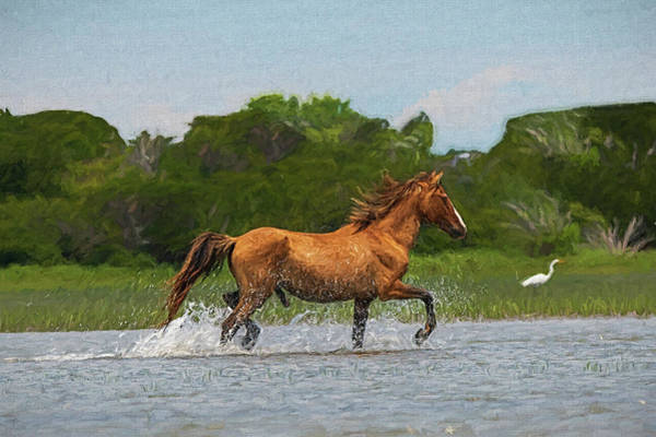 Photograph - Handsome Stallion Prancing Through The Water Paintography by Dan Friend