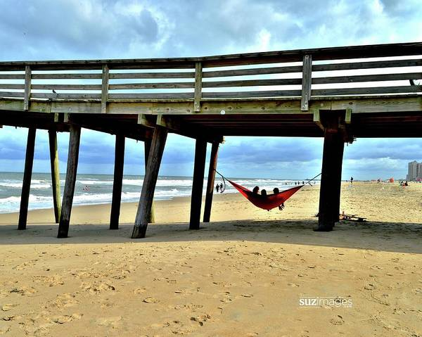 Photograph - Hanging At Virginia Beach  by Susie Loechler