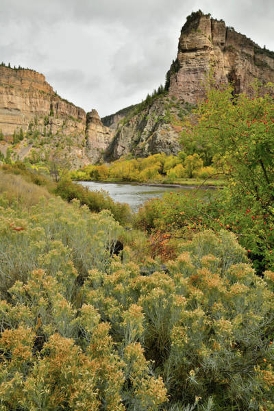Photograph - Hanging Lake Rest Area Fall Colors In Glenwood Canyon by Ray Mathis