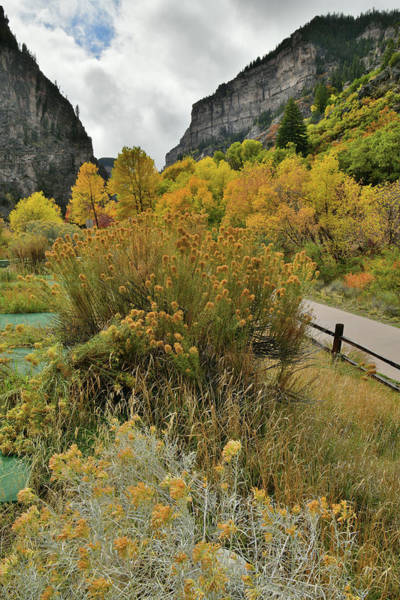 Photograph - Hanging Lake Rest Area In Fall Color by Ray Mathis