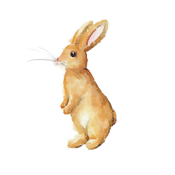 Wall Art - Mixed Media - Happy Bunny I by Andi Metz