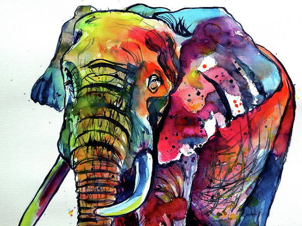 Wall Art - Painting - Happy Colorful Elephant Cd by Kovacs Anna Brigitta