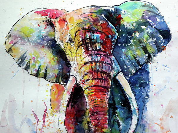 Wall Art - Painting - Happy Colorful Elephant II Cd by Kovacs Anna Brigitta