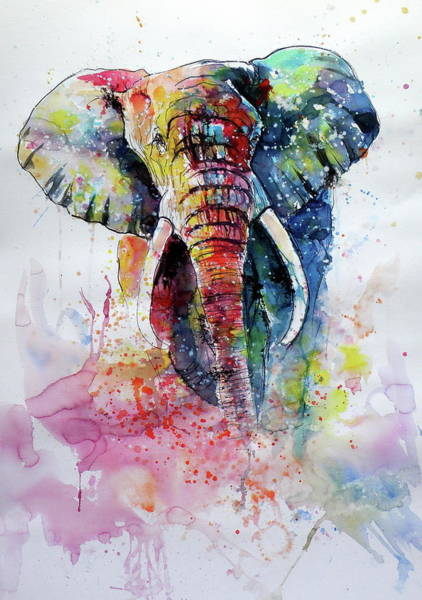 Wall Art - Painting - Happy Colorful Elephant II by Kovacs Anna Brigitta