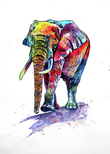 Wall Art - Painting - Happy Colorful Elephant by Kovacs Anna Brigitta