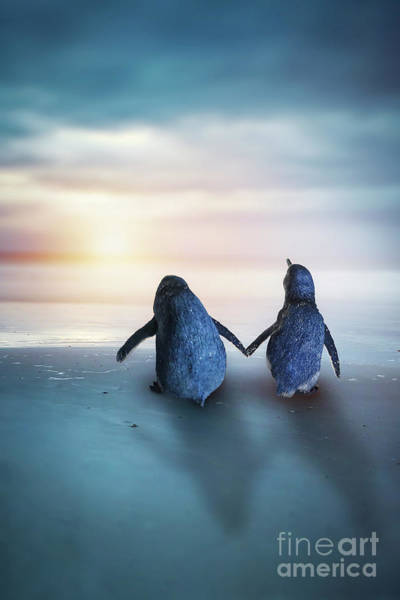 Wall Art - Photograph - Happy Feet by Evelina Kremsdorf