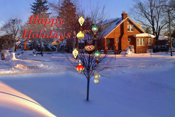 Photograph - Happy Holidays Jewel Tree by Marvin Bowser
