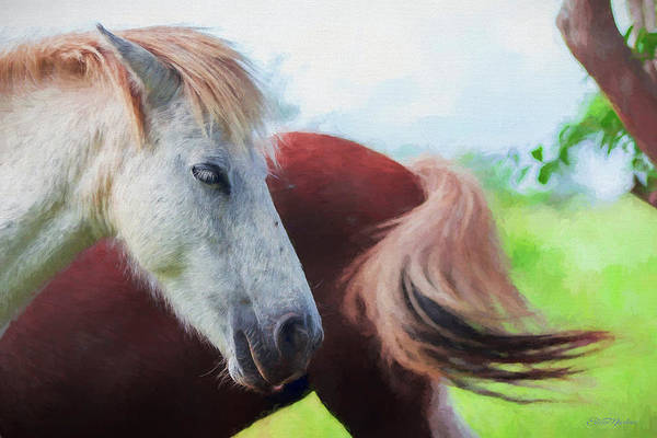 Painting - Happy Horses - Painting by Ericamaxine Price