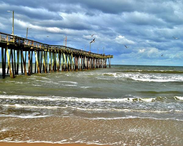 Photograph - Happy Place by Susie Loechler
