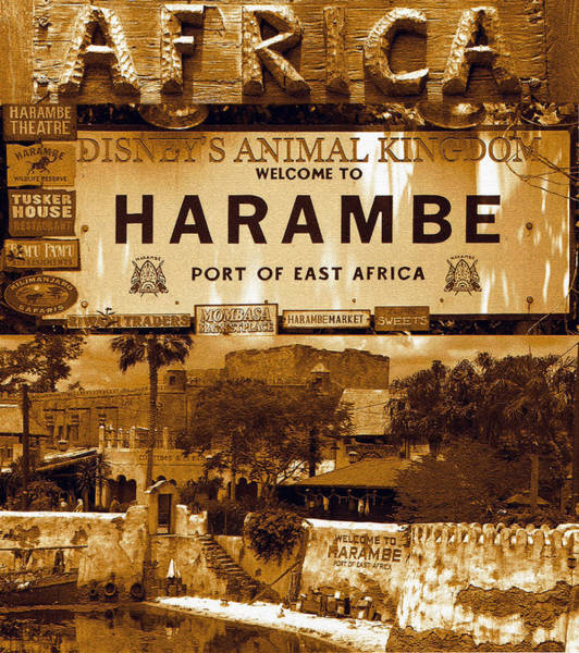 Wall Art - Photograph - Harambe Village Poster by David Lee Thompson